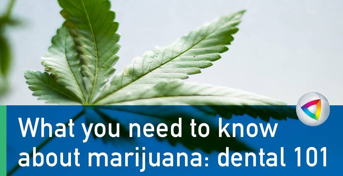 What-you-need-to-know-about-marijuana--dental-101